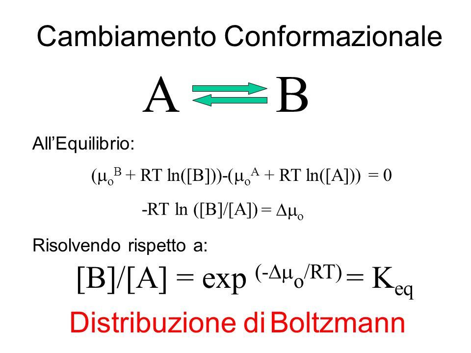 A B [B]/[A] = exp (-Dmo/RT) = Keq Cambiamento Conformazionale